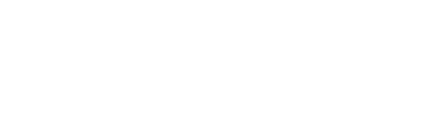 Computer Professionals Incorporated